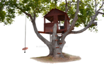 Tree House Stock Photo-0117-PNG