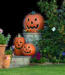 Halloween Pumkin Display Stock Photo DSC 0029 -PNG