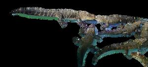 Alligator Stock Photo 0119 PNG