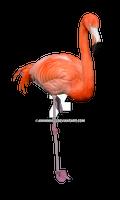 Flamingo Stock Photo 0309 PNG