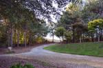 Country Path PremadeBackground Stock Photo 0075