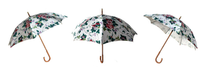 Floral Umbrella 3 Views Stock Photos 0294 PNG
