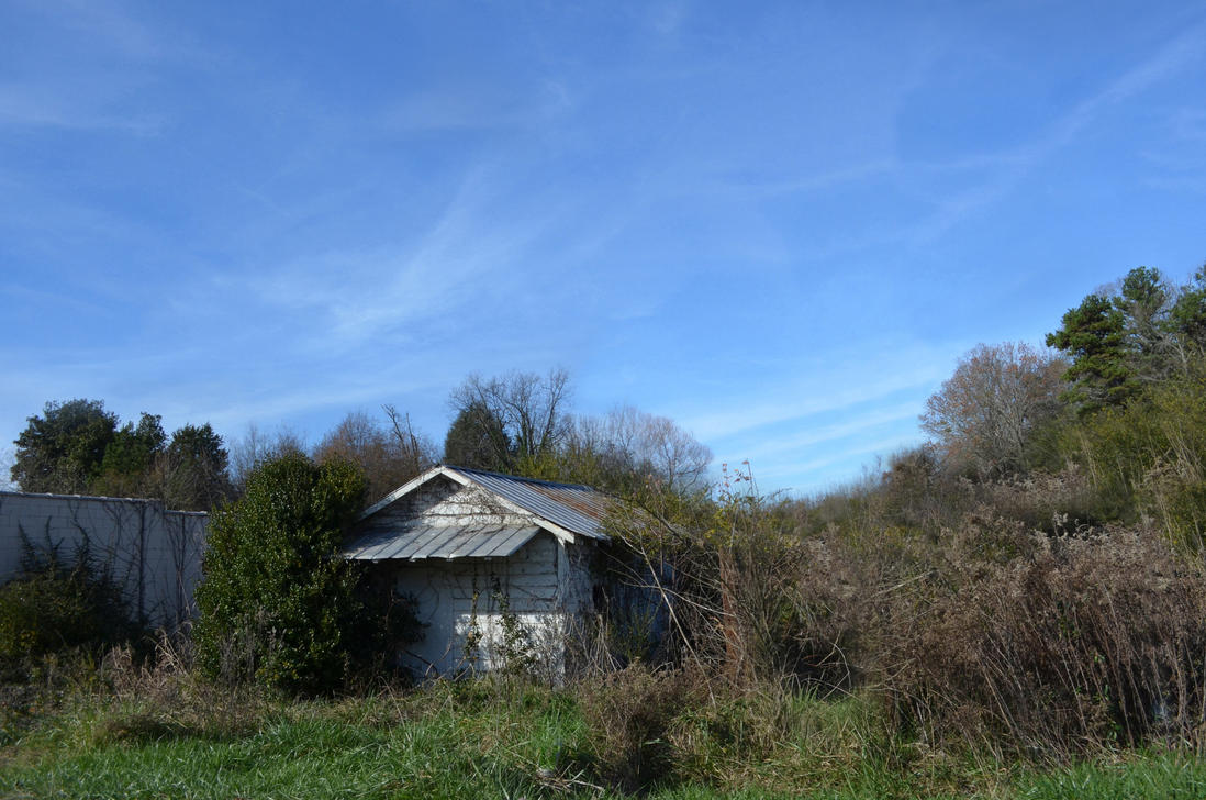 Overgrown Old House Stock Photo 0237 View 2 by annamae22