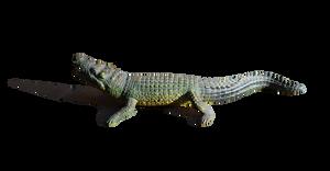 Alligator PNG Stock Photo 0251 2