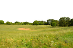 Scarecrow in Field PNG Background Stock 0123