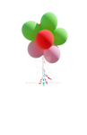 Balloon Flower PNG Stock Photo 0188