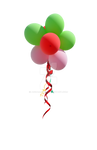 Balloon Flower PNG Stock Photo 0188 2