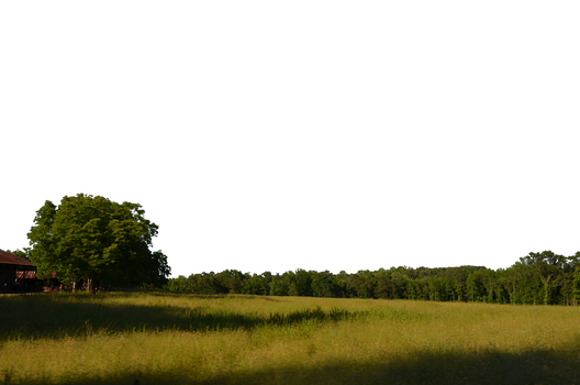 Field and Trees Background PNG Stock 0038 copy 5