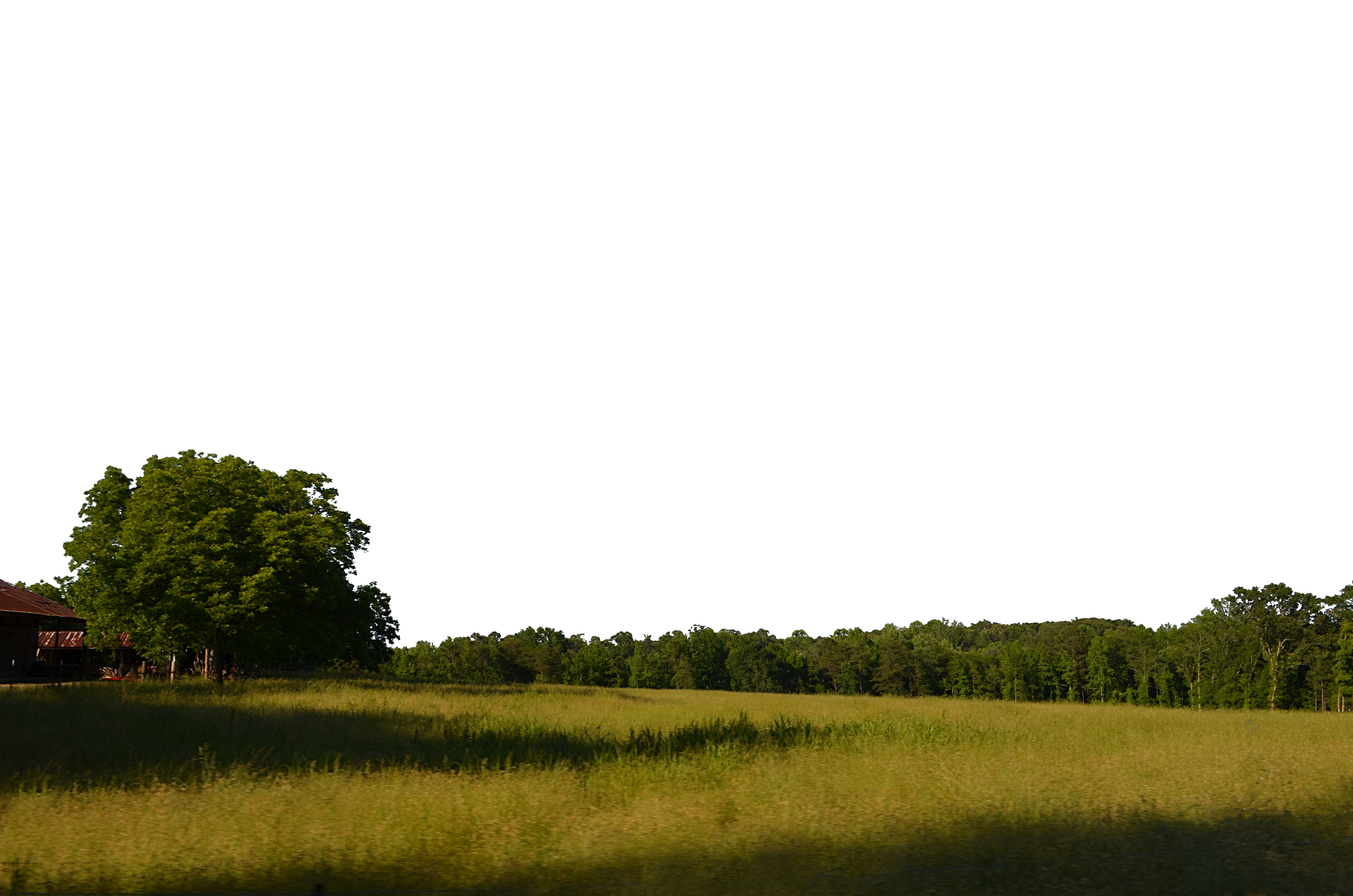 Field And Trees Background PNG Stock 0038 Copy 5 By