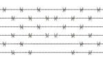 Barbed Wire PNG Stock cc2