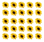 Sunflower PNG Texture Stock Stock 0317 4