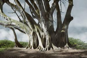 Mangrove Tree Background Stock 0019 neutral by annamae22
