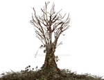 Dead Tree with Ivy PNG Landscape Stock FAVE