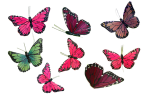 Butterfly Collection PNG Stock Photos 0043 copy 2  by annamae22