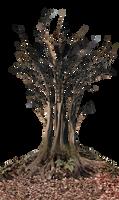 Dead Tree in Landscape PNG Stock Photo 0361