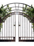 Iron Gate With Vines PNG Stock Photo 0048
