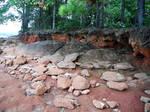 Rocky Forest Shoreline Background Stock Photo 0549