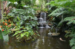Tropical Waterfall Background Stock Photo 0470