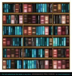 Book Shelf Stock Photo 0018 16 inch FF Credit Geni