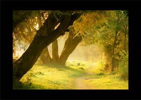 landscape 10 by wienwal