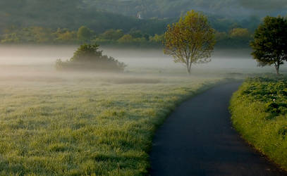 morning landscape 25 by wienwal