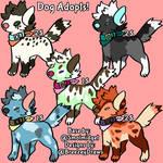 Cheap Base Dog adopts!