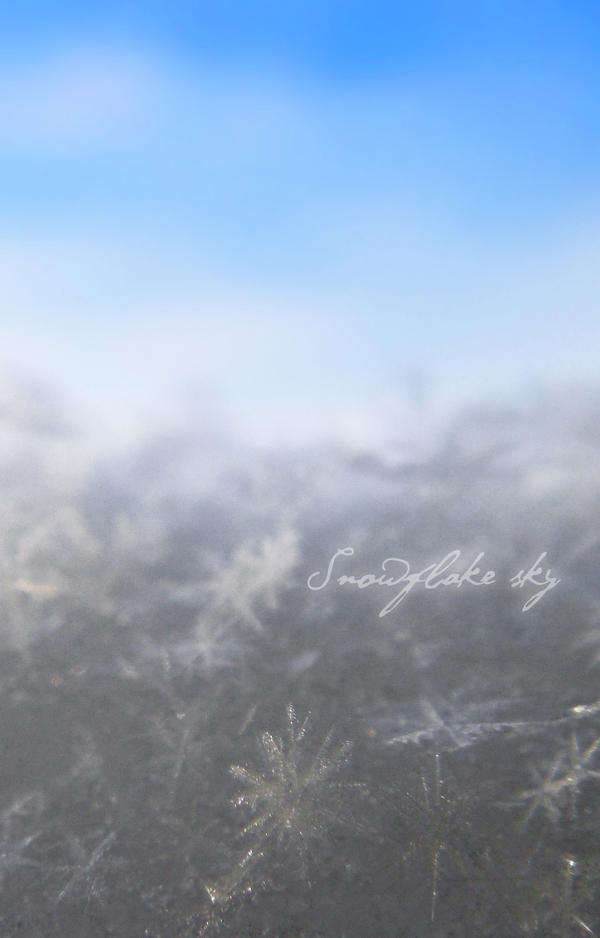 Snowflake sky by merrym