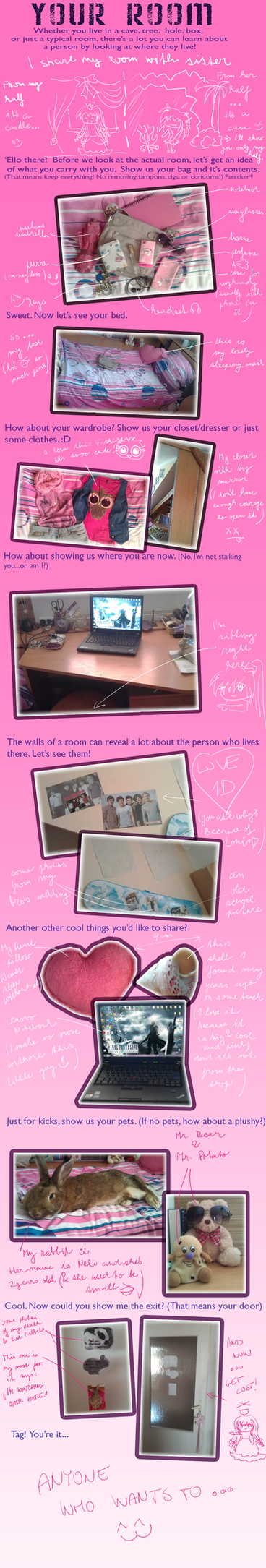 My Room Meme by magicalcolourofwinx