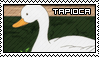 Stamp - Tapioca by Taorero
