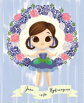 June is for Hydrangeas