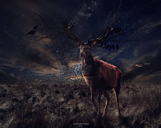 281214 Photomanipulation | The deer by GoFuckYourself69