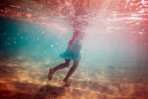 The Ocean Of Song