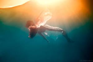 Papillon de Mer by SachaKalis
