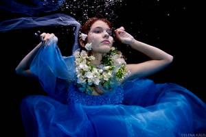 Iris by SachaKalis