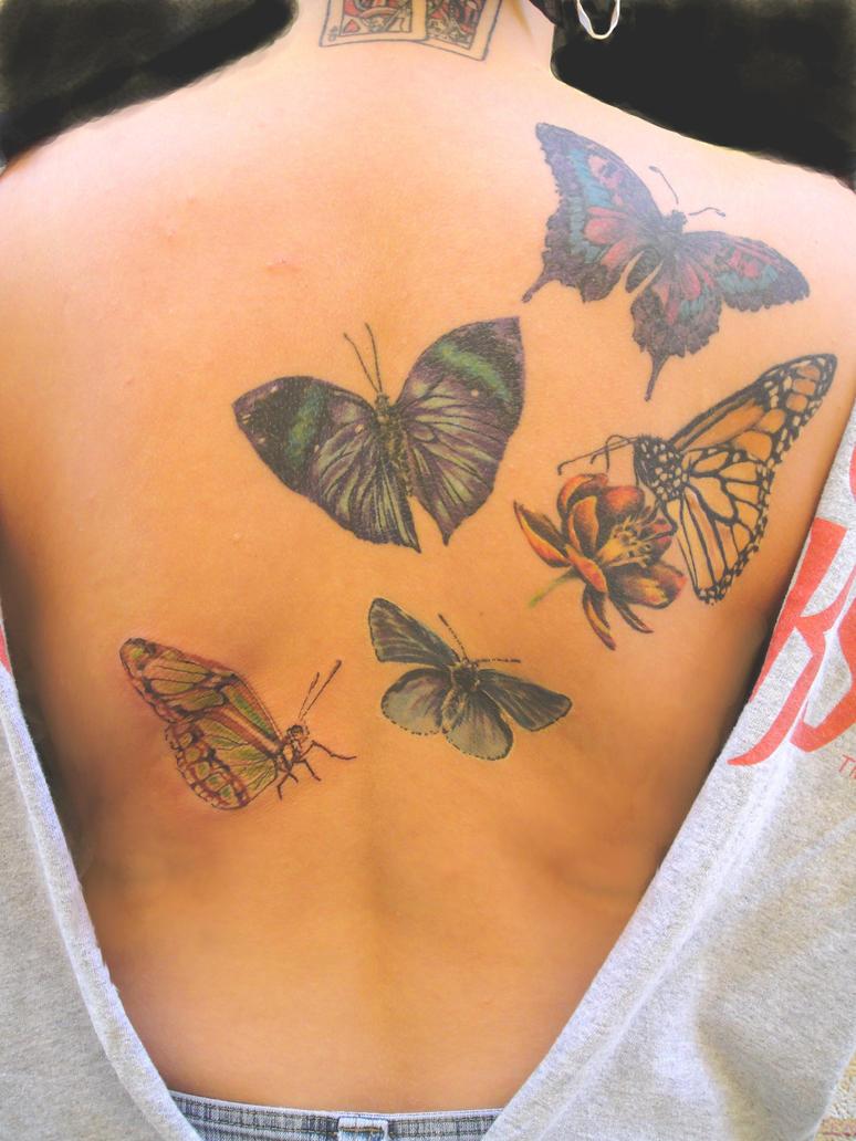 Jesse's Butterfly Garden By Tat2dMayMay On DeviantArt
