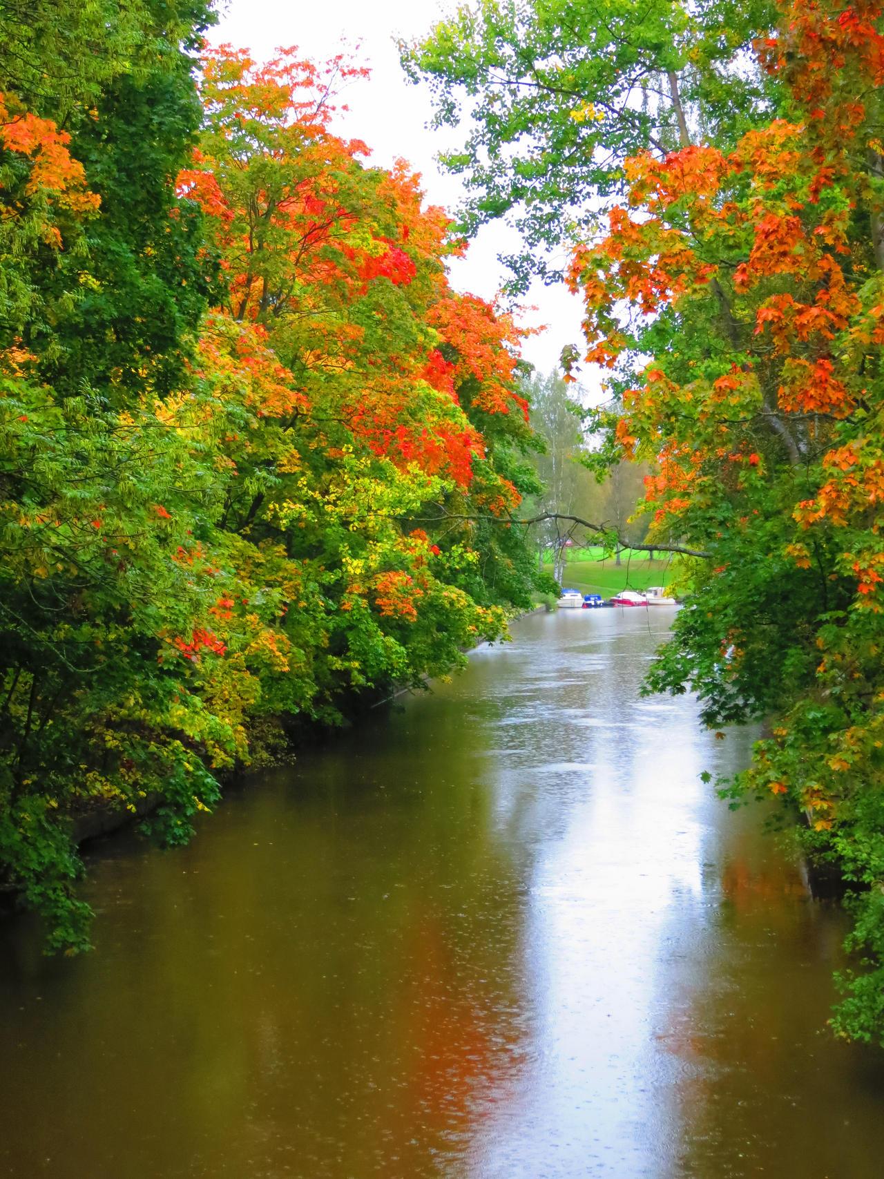 autumn river by princessAtet