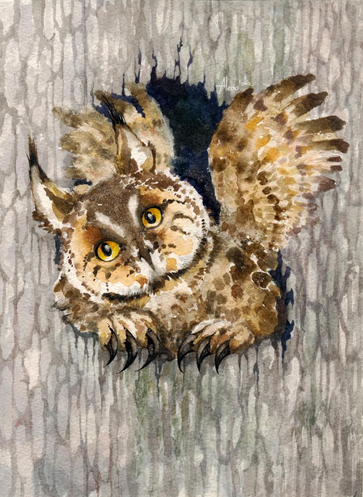 Owlynx by Aleoo-Whiter