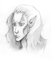 Veg - sketch