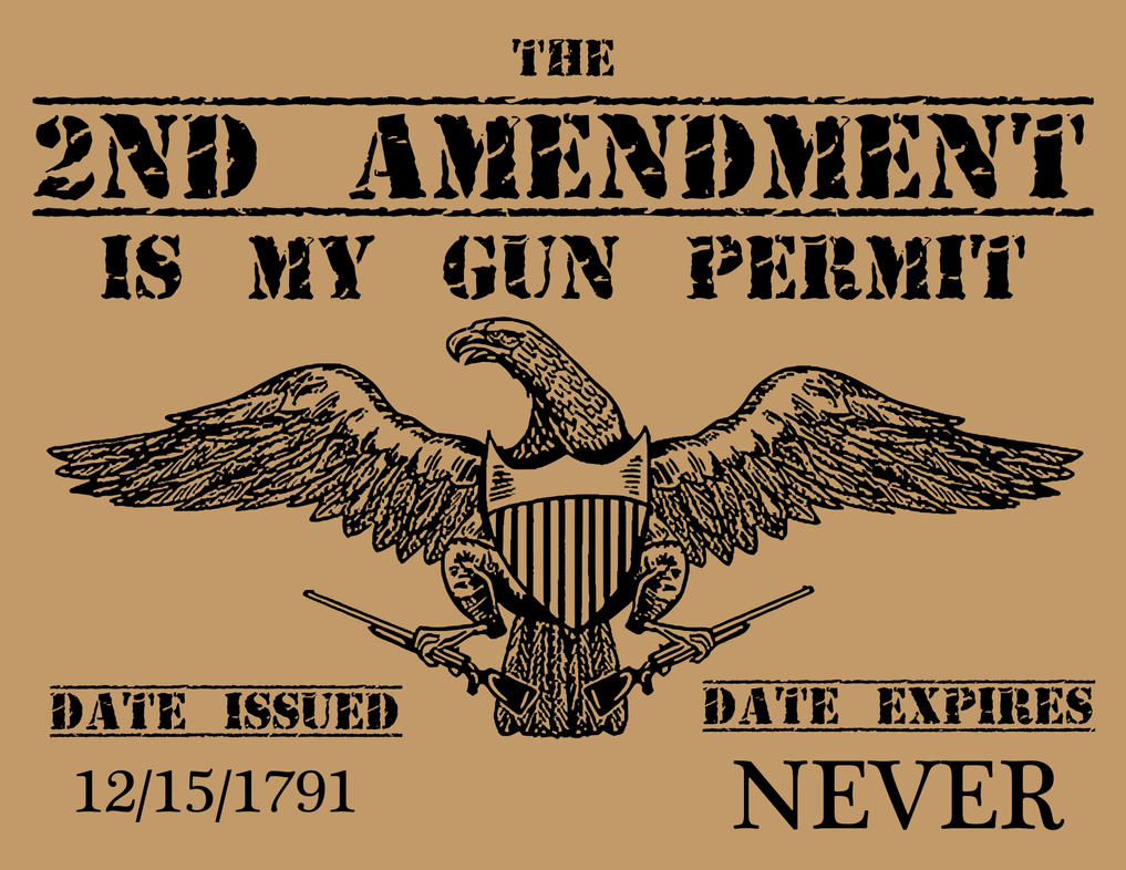 Image result for second amendment