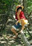 Monkey D. Luffy - Sailing Again