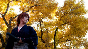 Rurouni Kenshin: One Side of the Soul