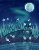 Nightfang by MysterystarAlyCat