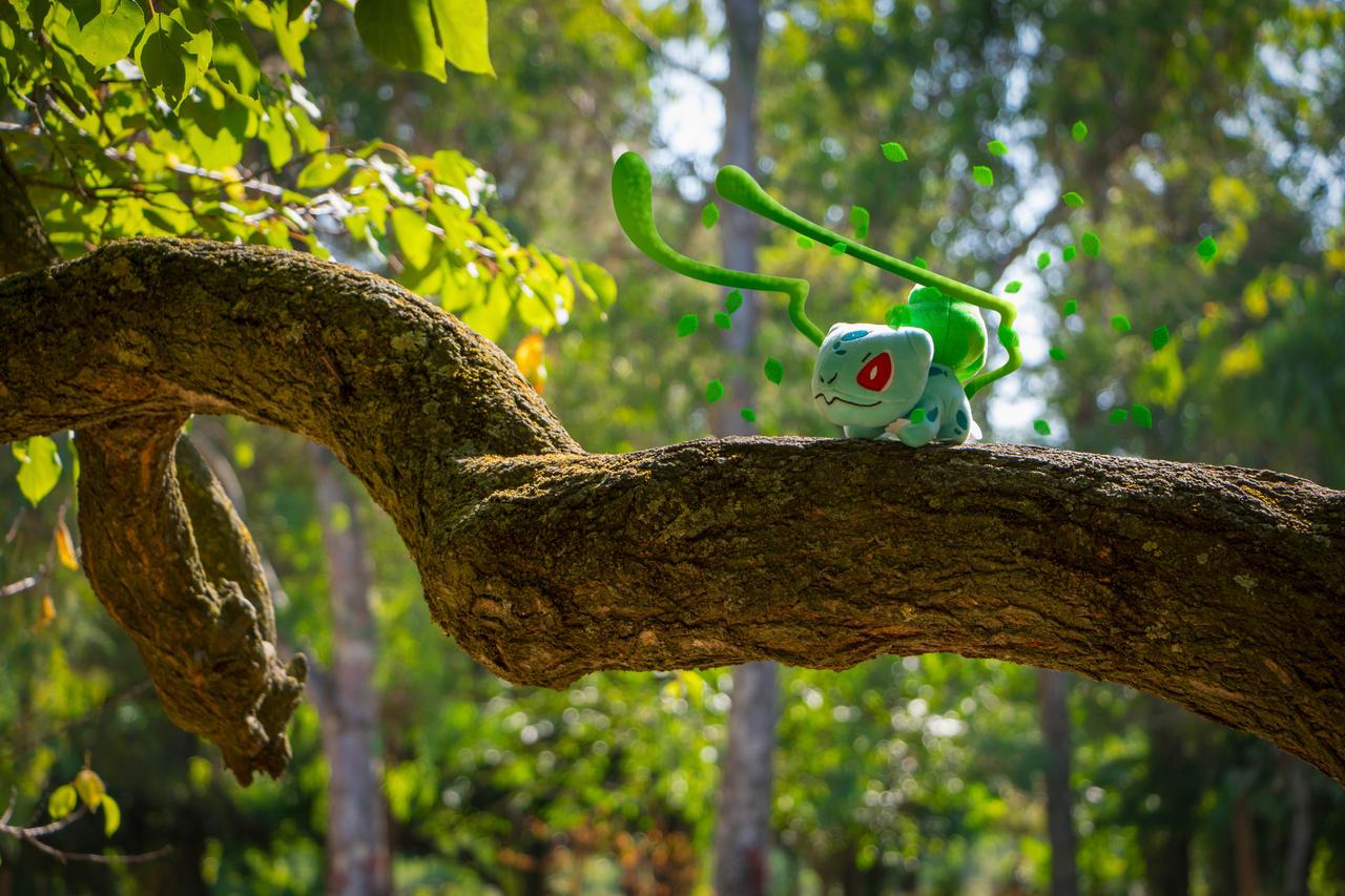Bulbasaur Real Life Pokemon Go 623267938