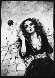 evolution of a black rose. by vinegar
