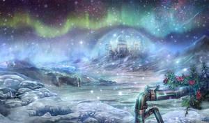 Solstice - Panorama by vinegar