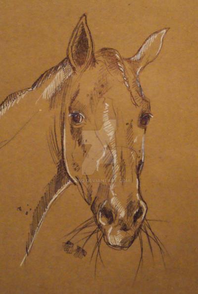 sketch 4 by Jniq