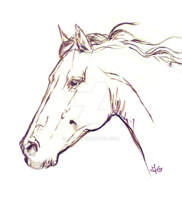Sketch 5 by Jniq
