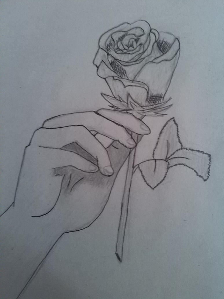 Hand holding a rose by na3illa on deviantart for Hand holding a rose drawing