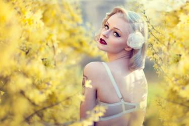 Sunlight by Freyja90