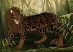 Wildcat: Ceylan